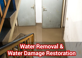 Water Removal & Water Damage Restoration